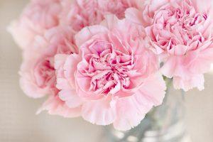 Silk Bink rosa Blueten